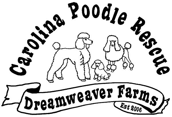 Carolina Poodle Rescue